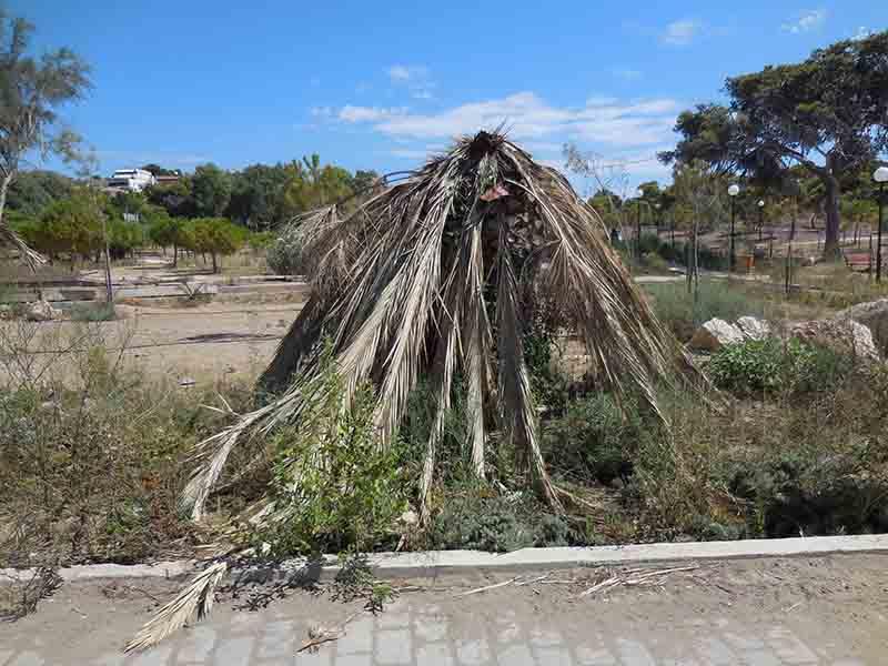 """Ρημάζει το """"Πρότυπο Οικολογικό Πάρκο"""" – Εικόνες ντροπής"""