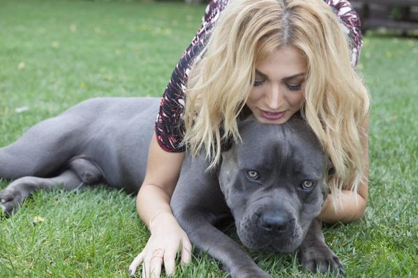 Ο θάνατος του σκύλου της Σπυροπούλου και η χαμένη τιμή της δημοσιογραφίας