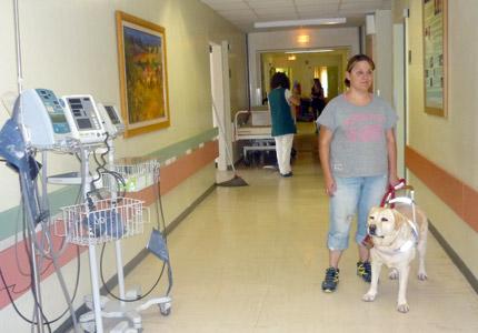 Μέη: Ο πρώτος σκύλος που επιτρέπεται σε νοσοκομείο