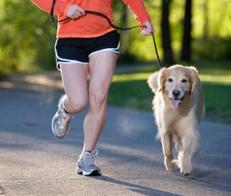 Τρέξτε με το σκύλο σας για καλό σκοπό