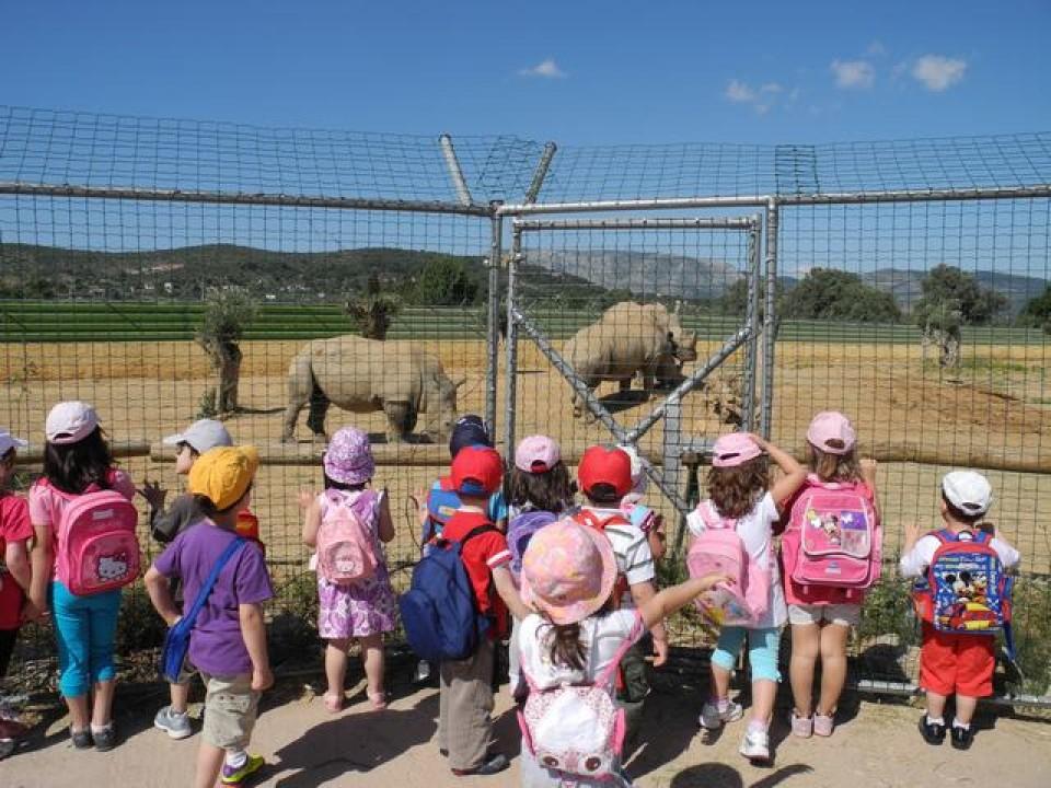 Υπ. Παιδείας: Όχι στις σχολικές εκδρομές σε ζωολογικούς κήπους