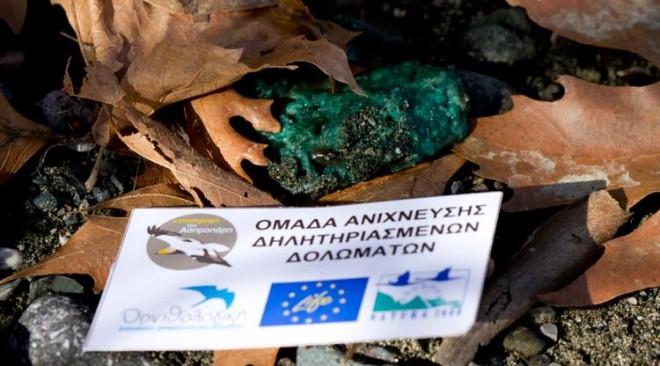Παγκόσμια απειλή το παράνομο εμπόριο άγριων ζώων
