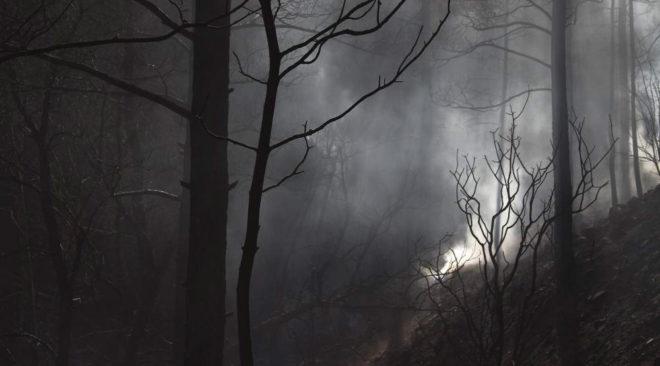Μια πυρκαγιά στη Βάρη, 53 χρόνια πριν...