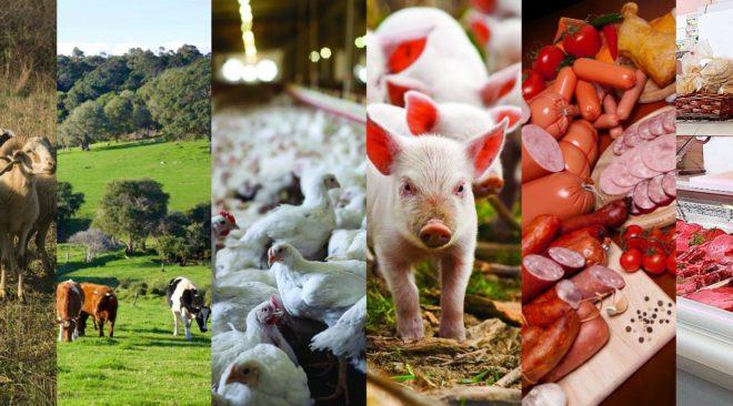 Διευκρινίσεις της Εθνικής Οργάνωσης Κρέατος για το δείπνο στη Γλυφάδα