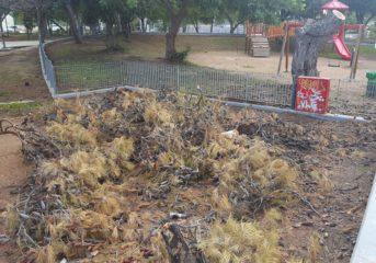 Εικόνες ντροπής στο Πάρκο Ηρώων της Βούλας (photos)