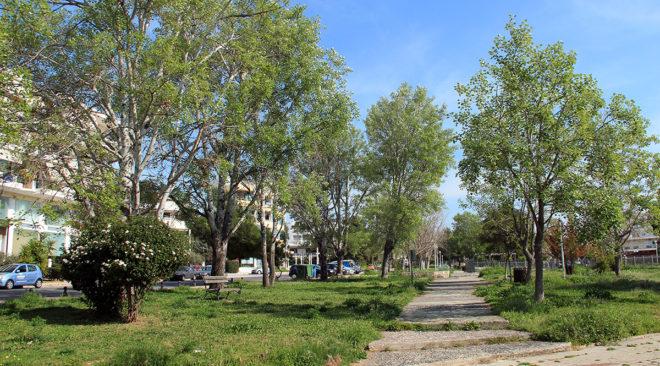 Βούλα: Εφιάλτης στο πάρκο με τις λεύκες