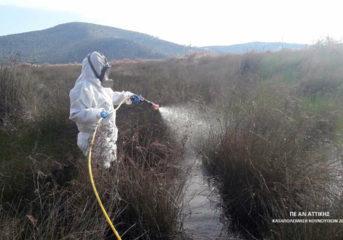 Πού ψεκάζουν για κουνούπια σε Βάρη, Βούλα και Βουλιαγμένη