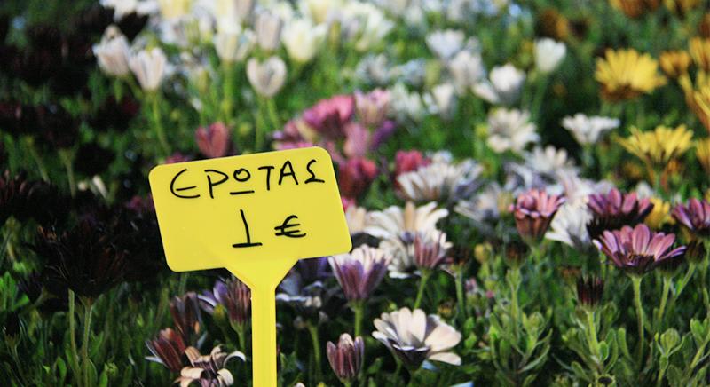 Σκέψεις για αναβολή της φετινής Γιορτής Λουλουδιών Βάρκιζας