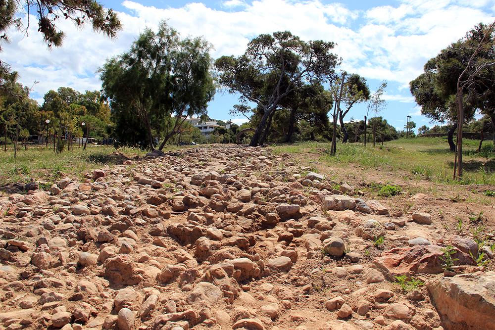 SOS για το αρχαιολογικό άλσος Καβουρίου (video)
