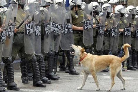 «Έφυγε» ο Λουκάνικος, ο σκύλος των αγανακτισμένων