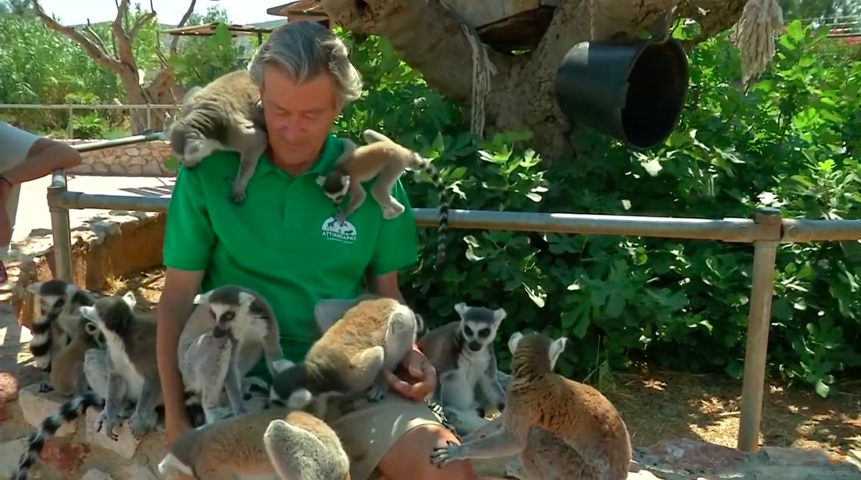 Και τα ζώα του Αττικού Ζωολογικού Πάρκου υποψήφια θύματα των capital controls!