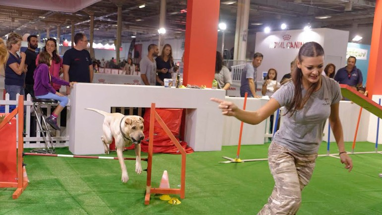 5ο International Dog Festival: 9-11 Οκτωβρίου