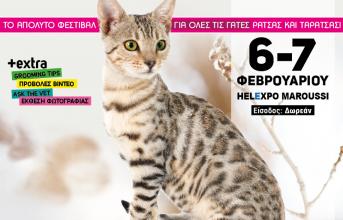 Το απόλυτο φεστιβάλ για γάτες διοργανώνεται στις 6-7 Φεβρουαρίου