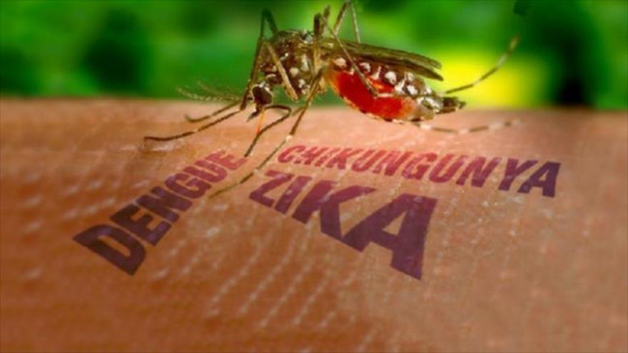 Ο επικίνδυνος ιός Zika και πως να τον αποφύγετε!