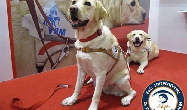 Καταγγελία για το Μετρό: Εμπόδισαν σκύλο-οδηγό τυφλού να μπει σε συρμό