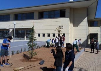 Η Υπηρεσία Πρασίνου των 3Β φύτεψε σχολεία της πόλης!