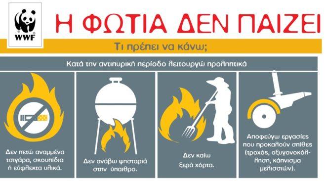 Για ελλιπή δασοπροστασία εν μέσω αντιπυρικής περιόδου κάνει λόγο η ελληνική WWF