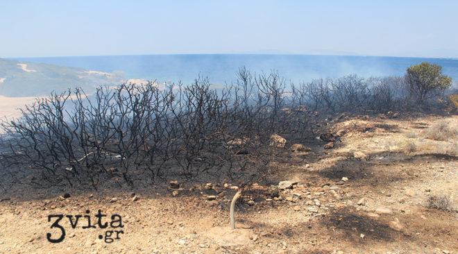 Προβληματίζει η δεύτερη πυρκαγιά στο ΠΙΚΠΑ Βούλας