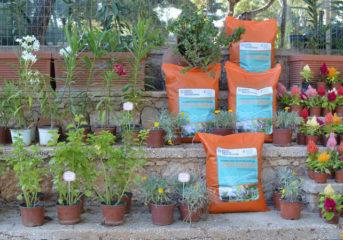 Βουλιαγμένη: Ξεκινά η διανομή του βιολογικού εδαφοβελτιωτικού Vita Green