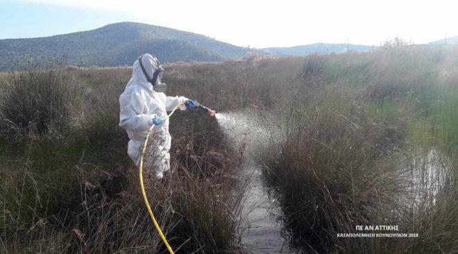 Ψεκασμούς για κουνούπια ξεκινά η Περιφέρεια και στα 3Β