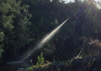 Ψεκάζει κατά κουνουπιών η Περιφέρεια Αττικής στα 3Β