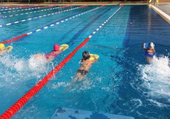 Ξεκινά προπονήσεις ο Αθλητικός Κολυμβητικός Όμιλος Βάρης Βάρκιζας
