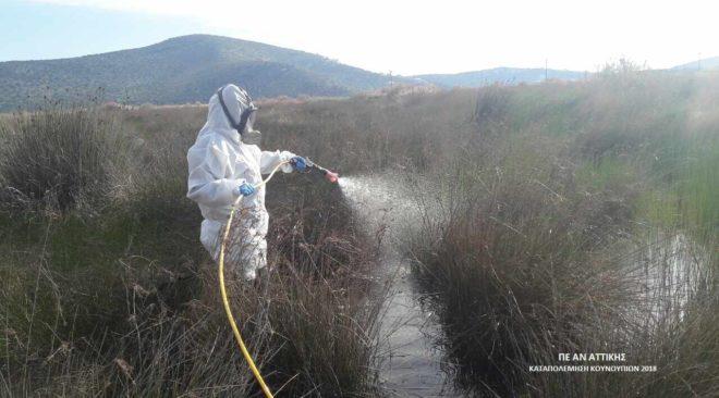 Ξεκινούν οι ψεκασμοί κατά των κουνουπιών σε Βάρη, Βούλα, Βουλιαγμένη