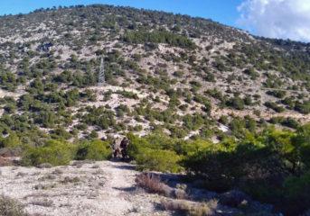Ο Αρχέδημος παρουσιάζει το δίκτυο πεζοπορικών διαδρομών στον Υμηττό