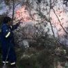 Στο Καβούρι το πρώτο σοβαρό συμβάν πυρκαγιάς για φέτος