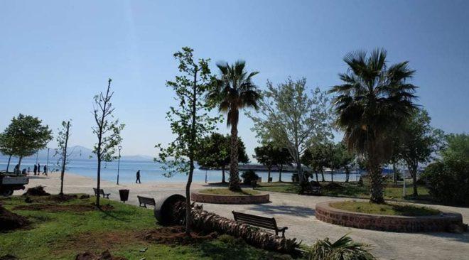 Φυτεύσεις δέντρων αλλάζουν την όψη της παραλίας Βάρκιζας